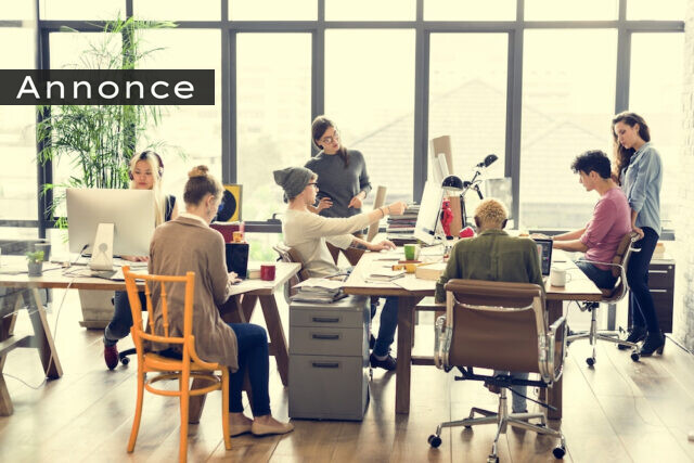Optimér virksomhedens processer med DiSC