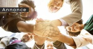 Teambuilding - skal, skal ikke